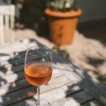 De lekkerste wijnen voor in de tuin