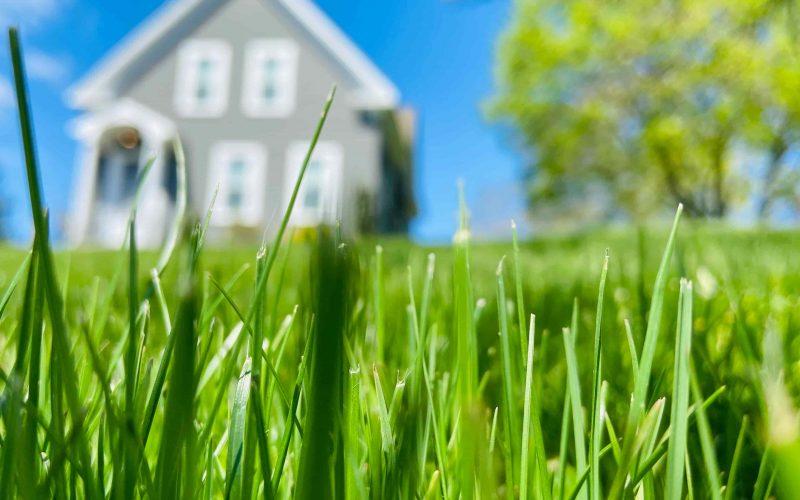 Een robot grasmaaier is handig en makkelijk in gebruik
