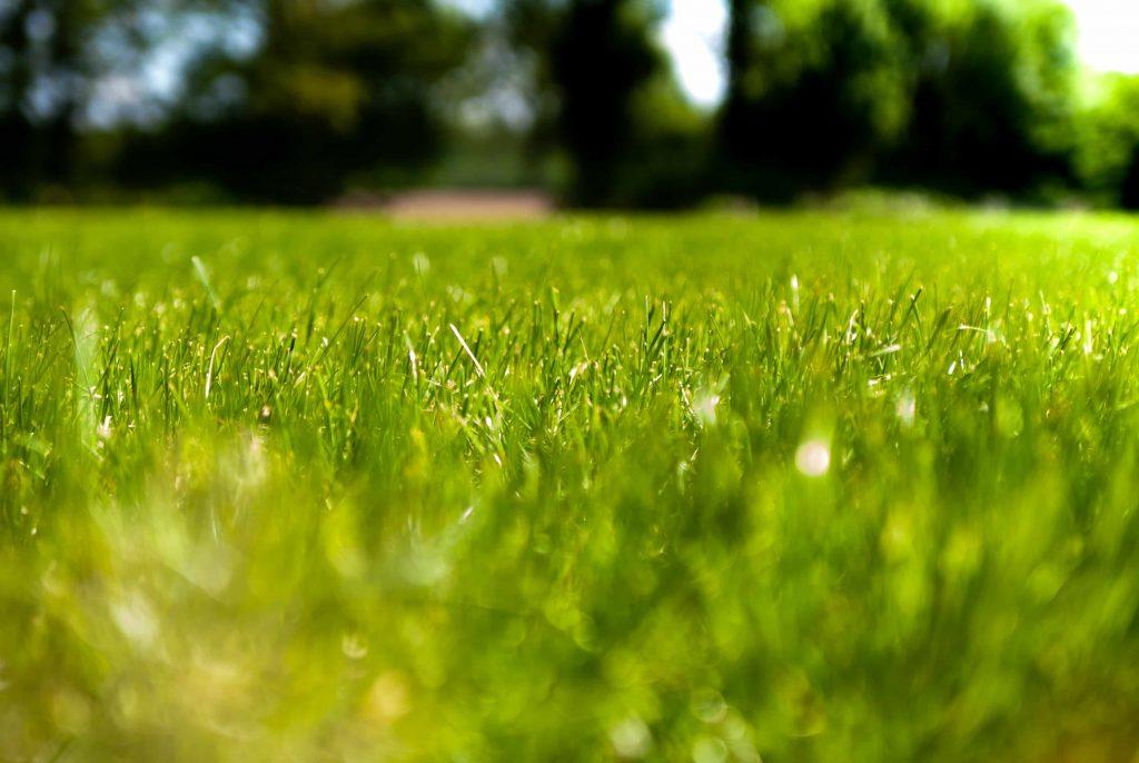 Een robot grasmaaier voor al je maaiwerk