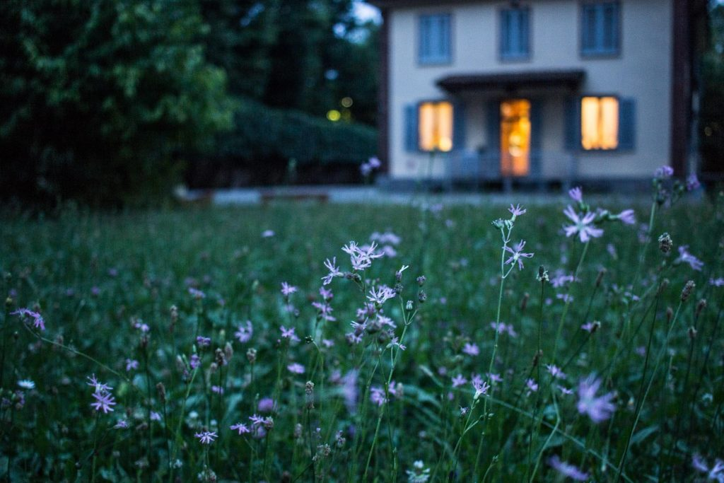 3 manieren om je tuin zomerklaar te maken